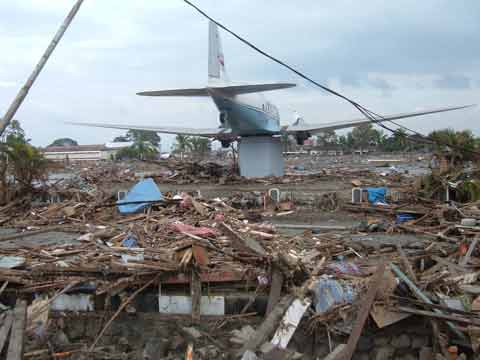 Years ago tsunami s lost toddler found wp s blog
